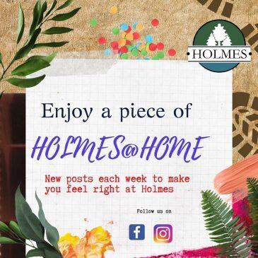 Holmes@Home Virtual Activities